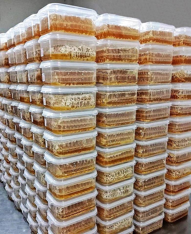 รังผึ้งสด รวงผึ้งแท้